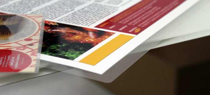 les feuilles A4 125 microns par face sont compatibles